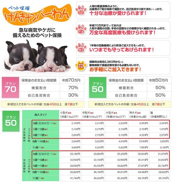 ペット&ファミリー少額短期保険(げんきナンバーわん)